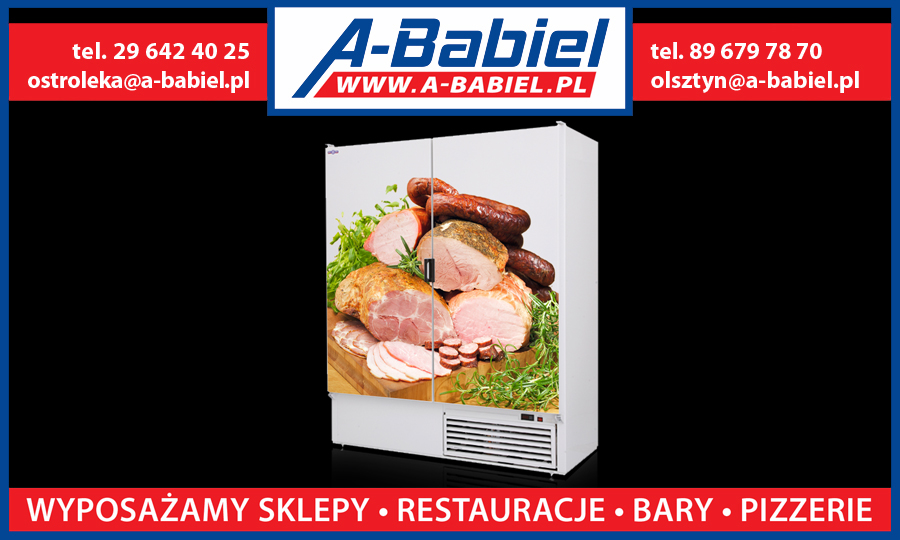 Szafa-chlodnicza Rapa Sch-z 1600 oklejane drzwi Logo A-Babiel Olsztyn